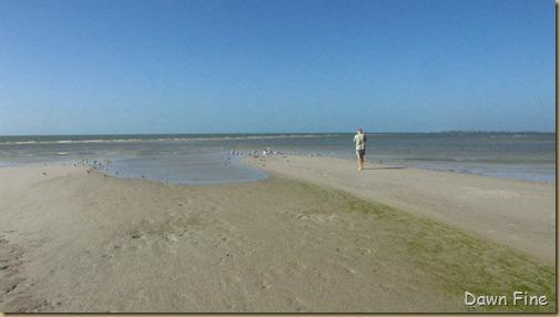 Bunche beach_195