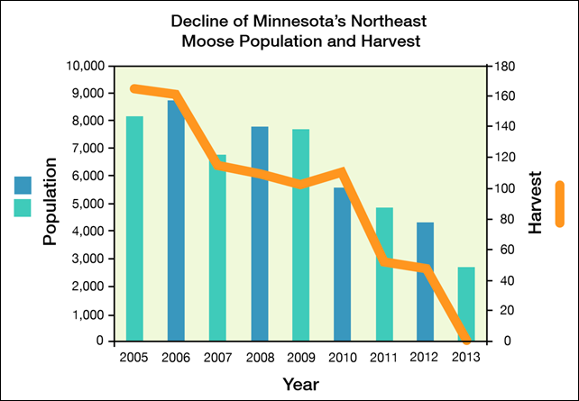 Decline of Minnesota's Northeast Moose Population and Harvest 2005-2013. Rising temperatures, deeper droughts and more extreme weather events fueled by manmade climate change are making survival more challenging for America's treasured big game wildlife from coast to coast. Graphic: NWF