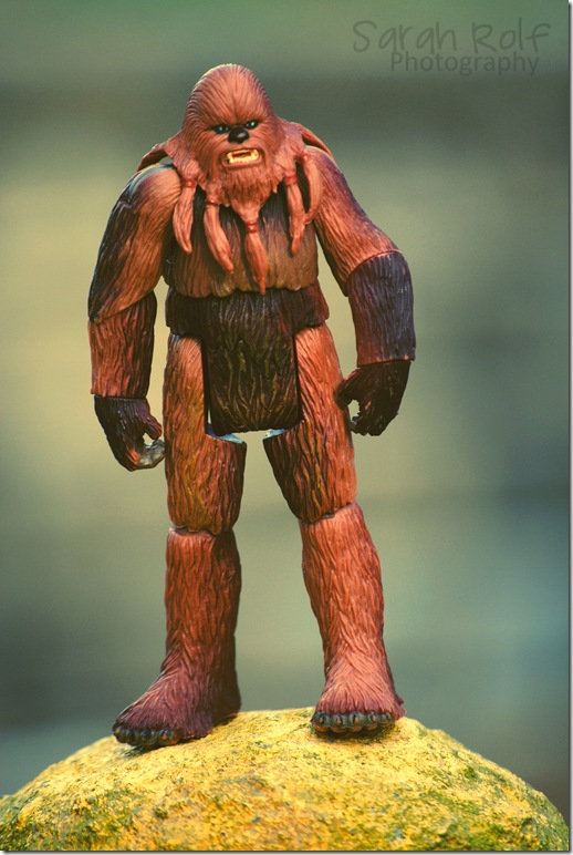 chewbacca-standing-on-a-pol