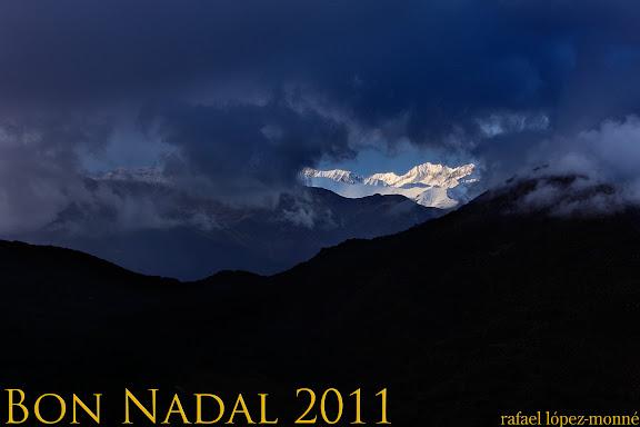RLM Bon Nadal 2011BX.jpg