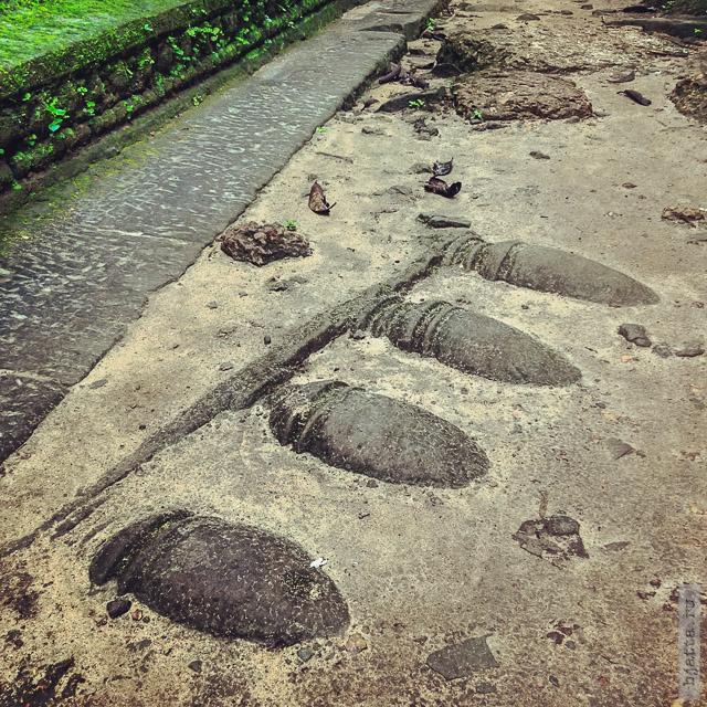 14. Angkor Tom. Ангкор Том. Но и в прямом смысле слова напичакны ими.