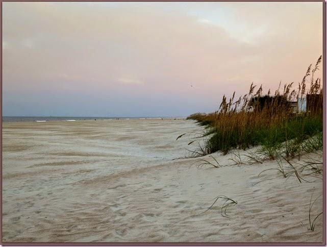 beachIMG_9251