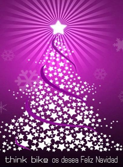 Feliz Navidad 2010-2011