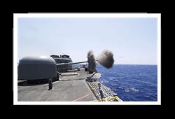 Bushmaster Navy Gun