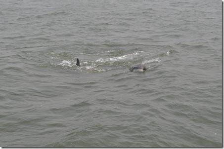 06-06-11 Tybee Beach 033