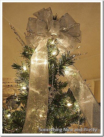 Christmas 2012 010