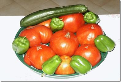 Ντομάτες Χούσου 001