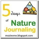 naturejournaling_thumb1_thumb2_thumb[2]