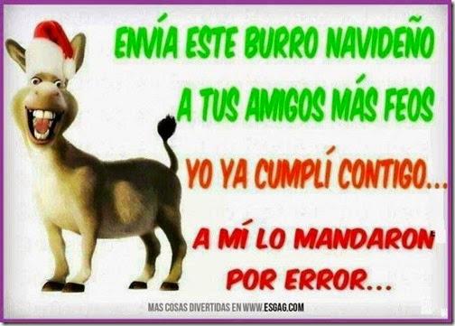 burro navideño 3 1