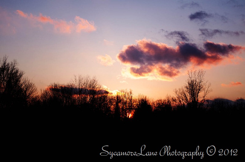 sunset- sycamoreLane Photography- web