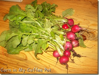wall paper- pond at grad- nest boxes- radishes 023
