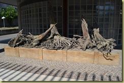 Original Tree Roots