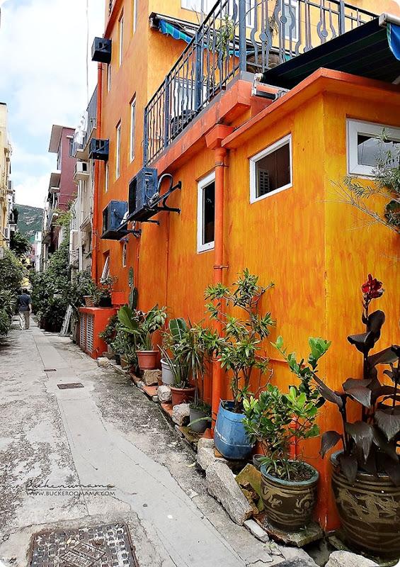 Orange-House-s