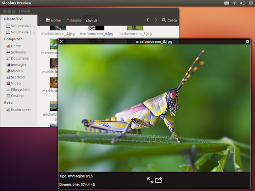 Gloobus Preview su Ubuntu 12.10 - immagini