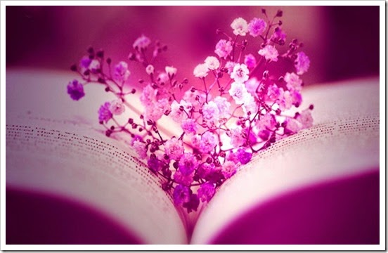 facebook_flowers_pink_books_timeline_monochrome_cover_pages_1600x900_32075