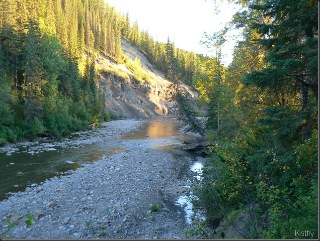 Flatbed Creek - Tumbler Ridge