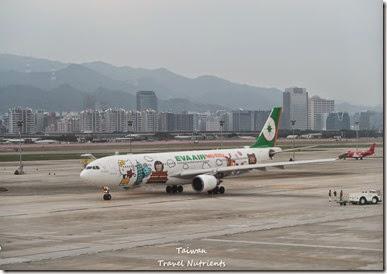 松山機場觀景台 (16)
