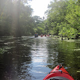 Two OClock Bayou Paddle July 14, 2012 - IMG_0035.JPG