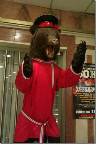 El oso disecado