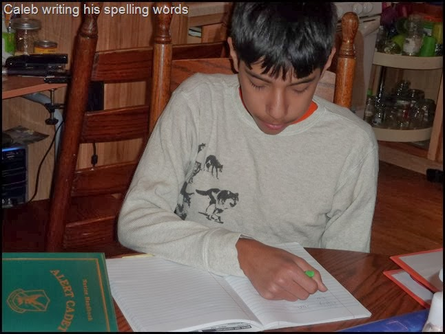 Reading Lessons Through Literature