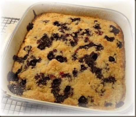 Blueberries and Cream Coffee  Cake