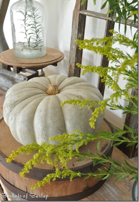 fall dining-cinderella pumpkin