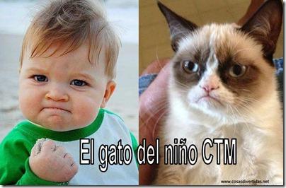 gato cdel niño CTN 1