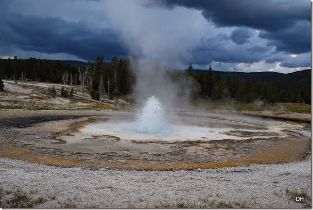 08-08-14 B Yellowstone NP (318)
