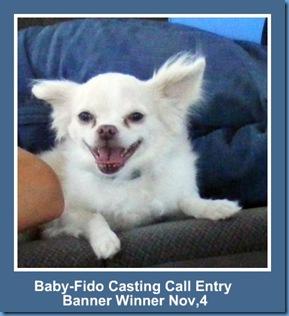 image Baby Fido Casting call entry Banner Winner Nov 4