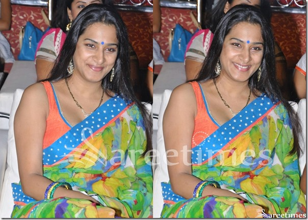 Surekha_Vani_Paint_Work_Saree