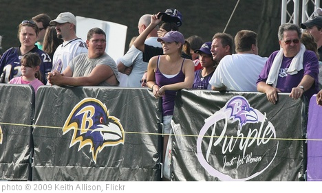 'Baltimore Ravens Fans' photo (c) 2009, Keith Allison - license: http://creativecommons.org/licenses/by-sa/2.0/
