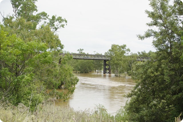 Gwydir River Bridge near Bingara Caravan Park