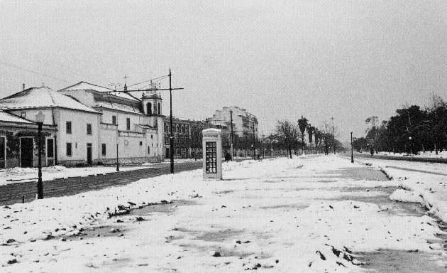 [Campo-Grande-19454.jpg]