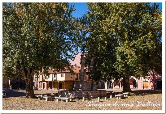 Plaza del Grano-5