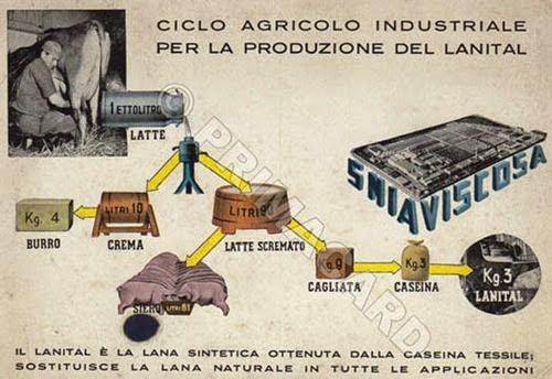 Ciclo agricolo-industriale per produrre lanital