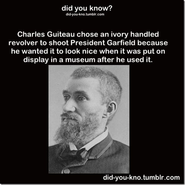 cool-trivia-facts-4