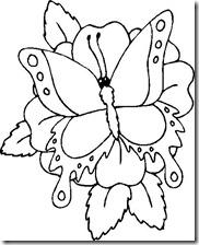 colorear mariposas pintaryjugar com (18)