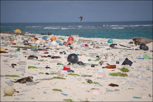 Marine debris litters a beach on Laysan Island in the Hawaiian Islands National Wildlife Refuge. Photo: U.S. Fish and Wildlife Service