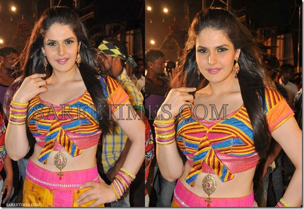 Zarine_Khan_Saree_Blouse_Designs