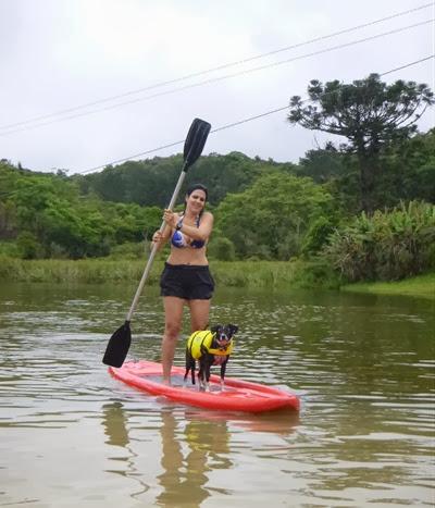 Pets Adventure 15 (143)
