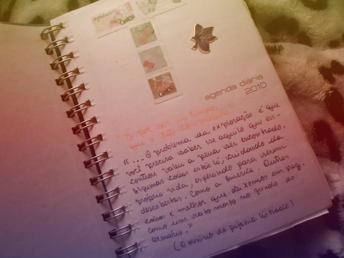 diario19