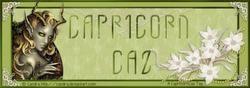 CapricornCaz Tutorials
