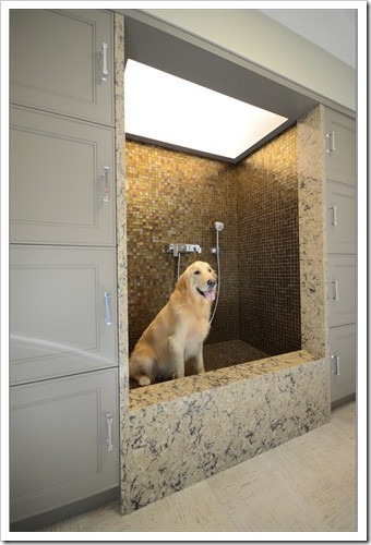 mudroom_-_dogwash