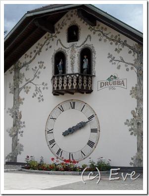 Juni 2011 Schwarzwald 018