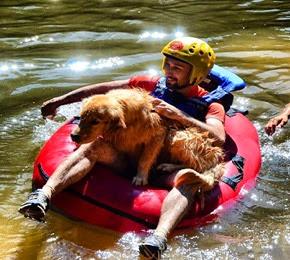 Pets Adventure 18 (141_1) (1)