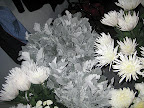 Forgive the flash on this one! Here are the mums and the dusty miller leaves.