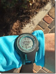 Weekend Running (3)