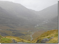 goat road pass with car