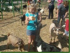 Hailey and goats