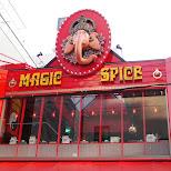 magic spice in nagoya in Nagoya, Aiti (Aichi) , Japan